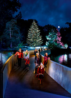 Christmas at Kew image230x320px